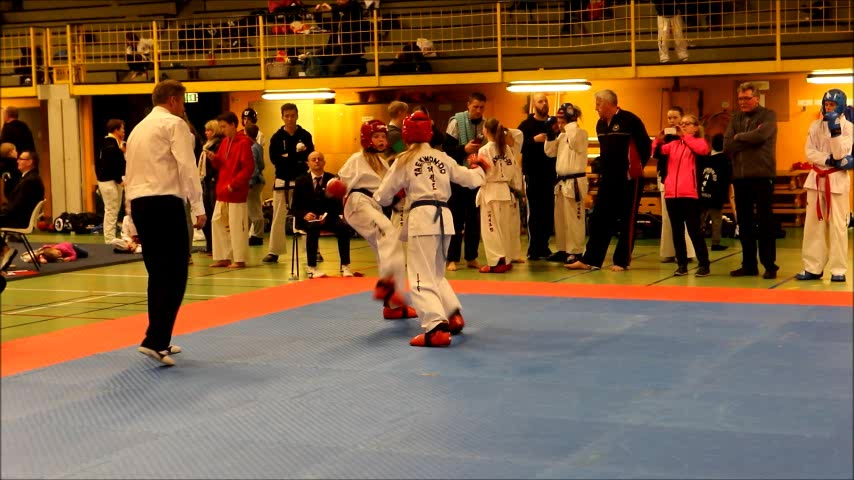 Regionmesterskap taekwondo